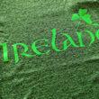 Irish Memories Irish Memories Green Grindle Ladies Performance T-Shirt   L