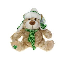 Irish Memories Barry 10 inch Bear WCZ With Earrings