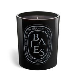 Diptyque Berries  Candle 300g